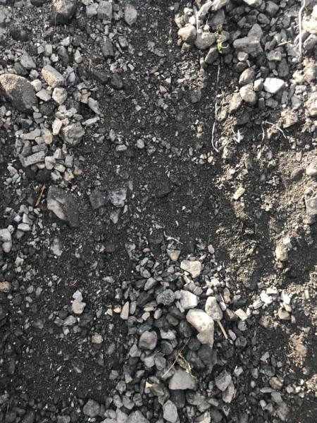 Steinkohle lose 150 Tonnen, Korngröße bis 80 mm, Sonderposten